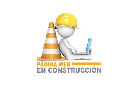 CURSOS CONSTRUCCION